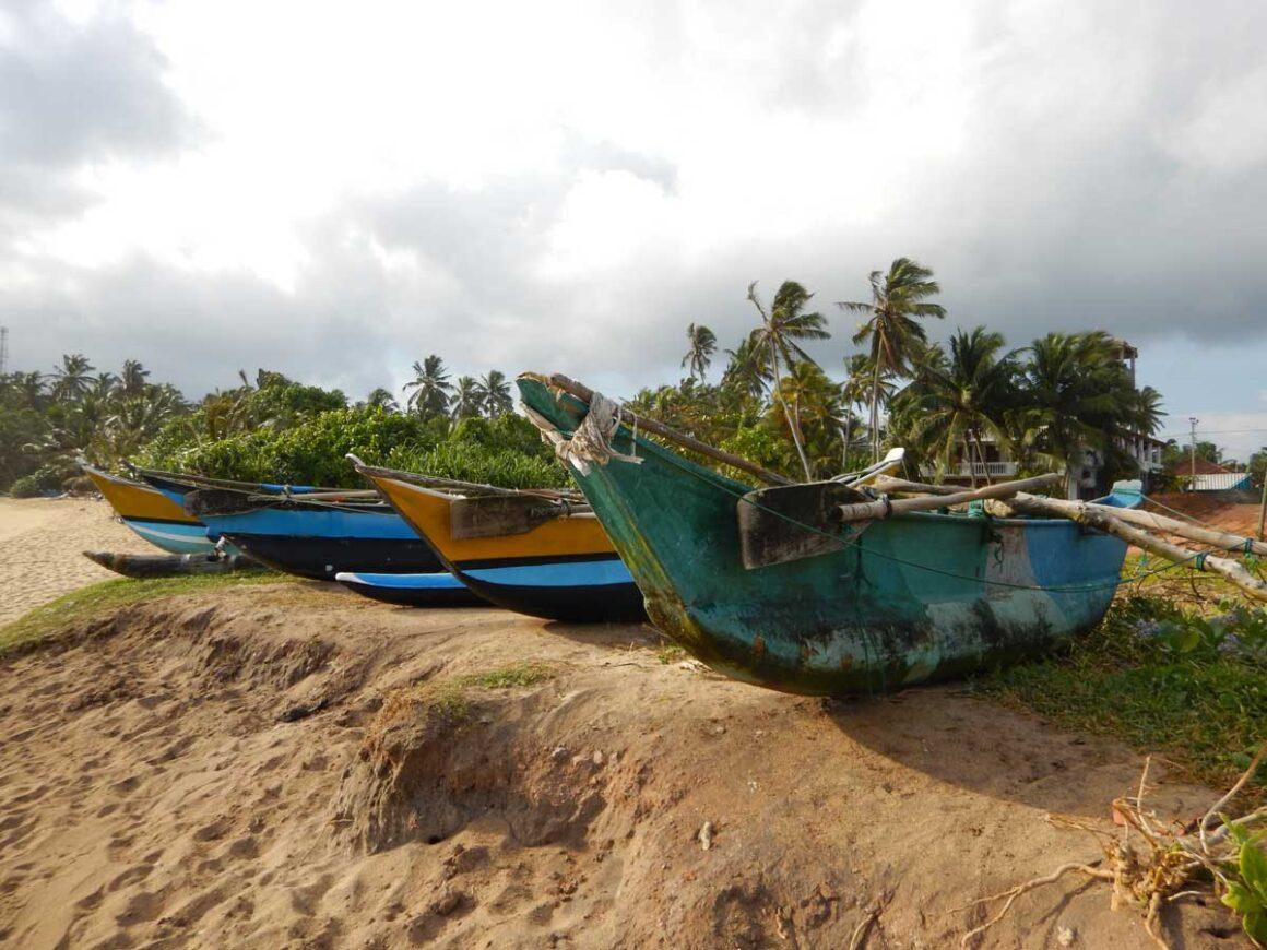 Sri Lanka agosto: la spiaggia di Mirissa